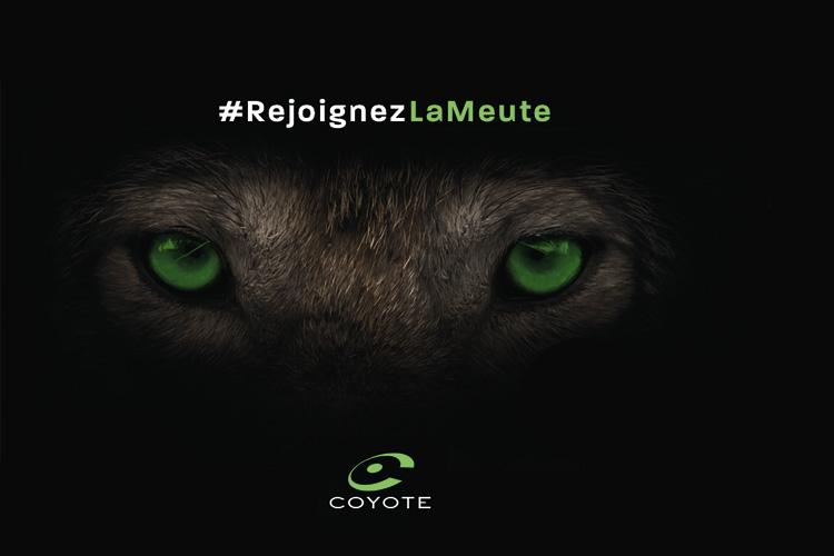 coyote rejoignez la meute lappoms lifestyle blog les gros mots