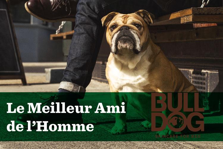 bulldog skincare beard natural lappoms lifestyle blog