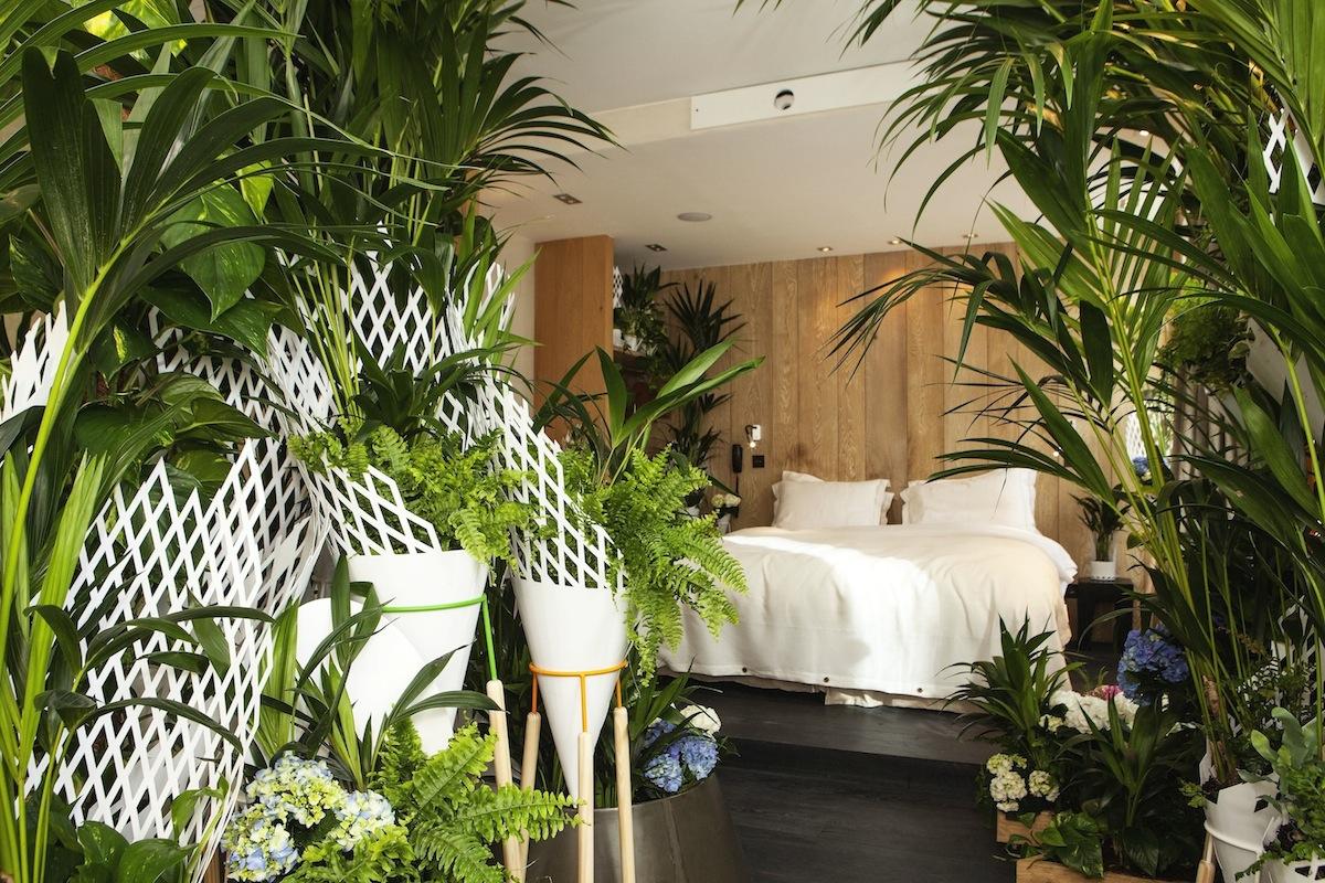 la suite verte x hotel hidden lappoms blog lifestyle mode homme mode femme musique. Black Bedroom Furniture Sets. Home Design Ideas