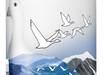 GREY GOOSE - Bouteille
