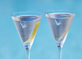 GREY GOOSE- Cocktail Dry Martini RPCA